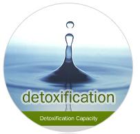 box_detoxification