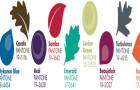 Pantone top 10 Men's Fashion Trend Colours Fall 2013 (September- December)