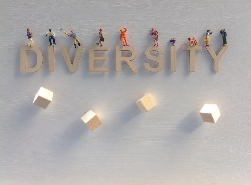 David Hayden- Diversity