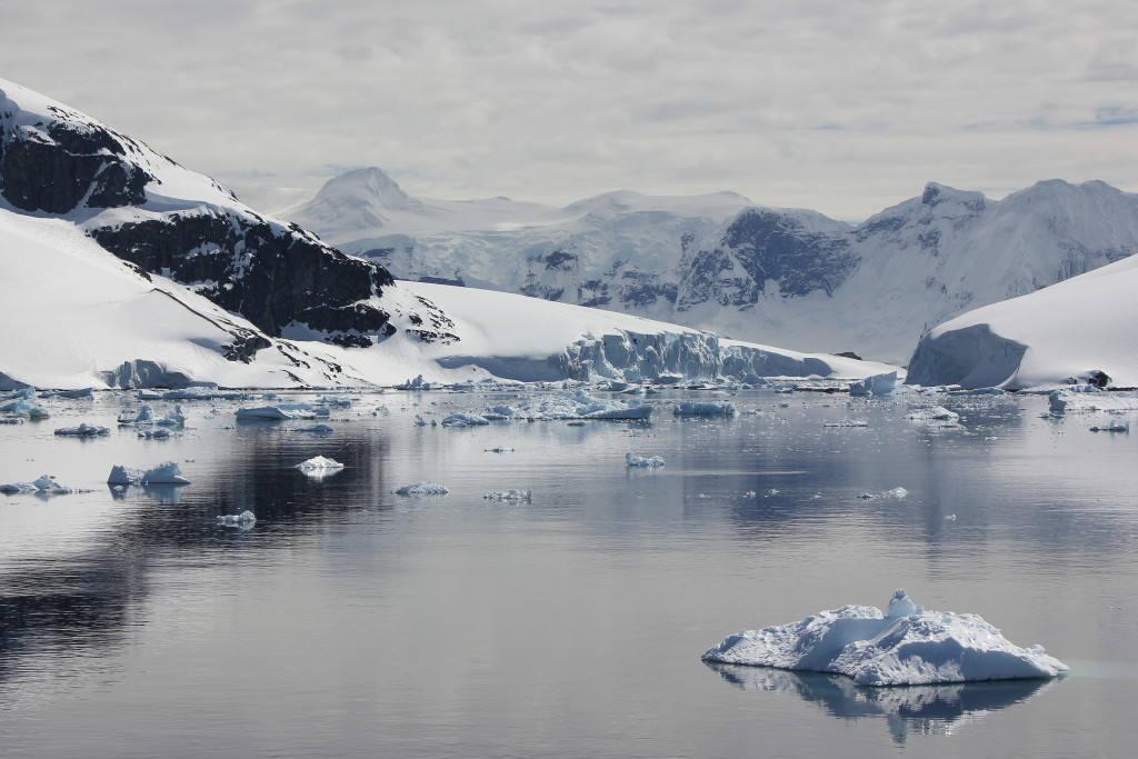 Tranquil with Ice- Antarctica